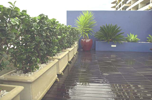 the balcony small space garden design Potted Landscapes